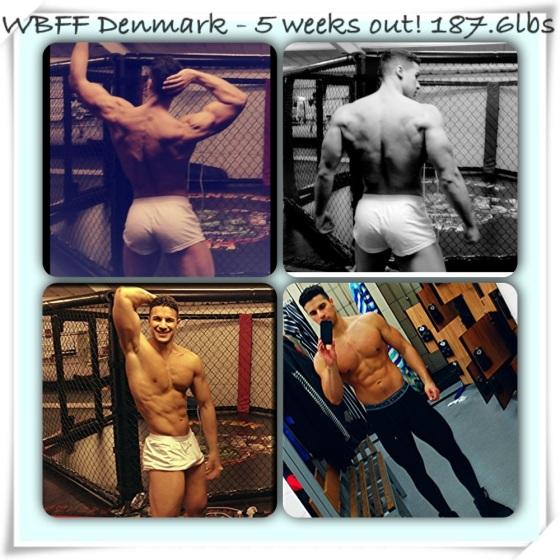 WBFF Denmark Lee